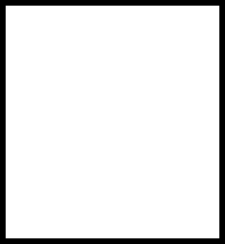 RVN logo